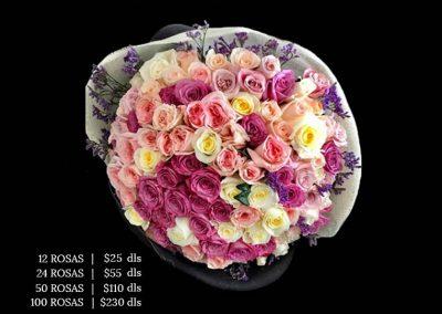 blossom-27