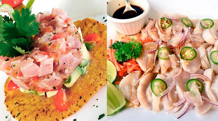 Blue Fish Restaurant -  Seafood, Mexican, Latin - San Jose del Cabo