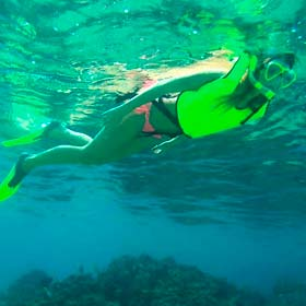 Beach Hopper Snorkeling Tour l Tours and Activities in Cabo San Lucas